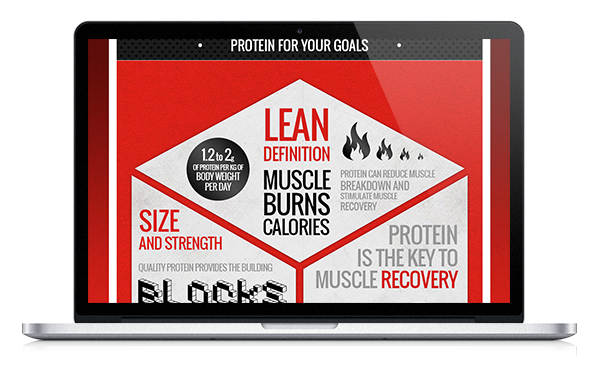 Protein Project infographic, hosted at www.maximuscle.com/proteinproject