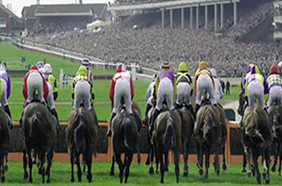 Cheltenham Festival – The Winners and Losers